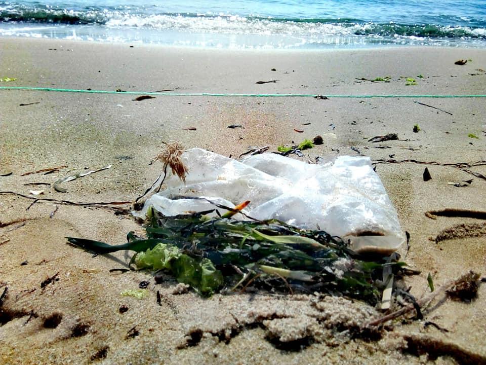 Beach Litter Monitoring at Monastir, June 2020_4