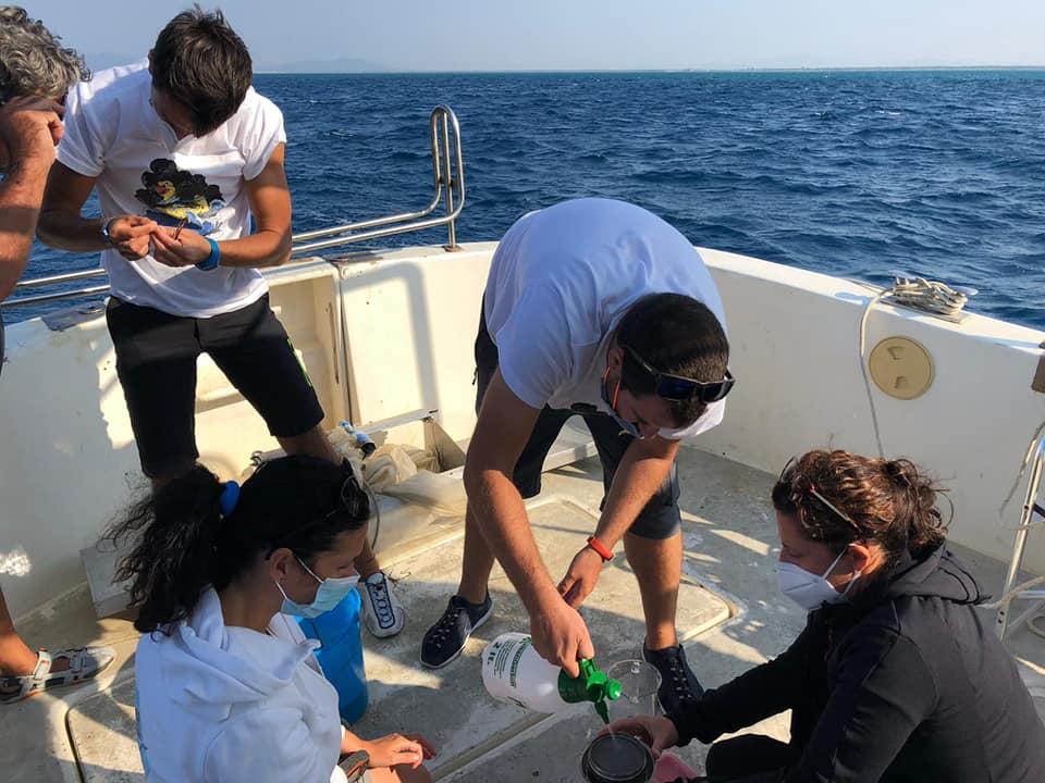 Monitoring activity in Italy – Tuscany, September / October 2020 4
