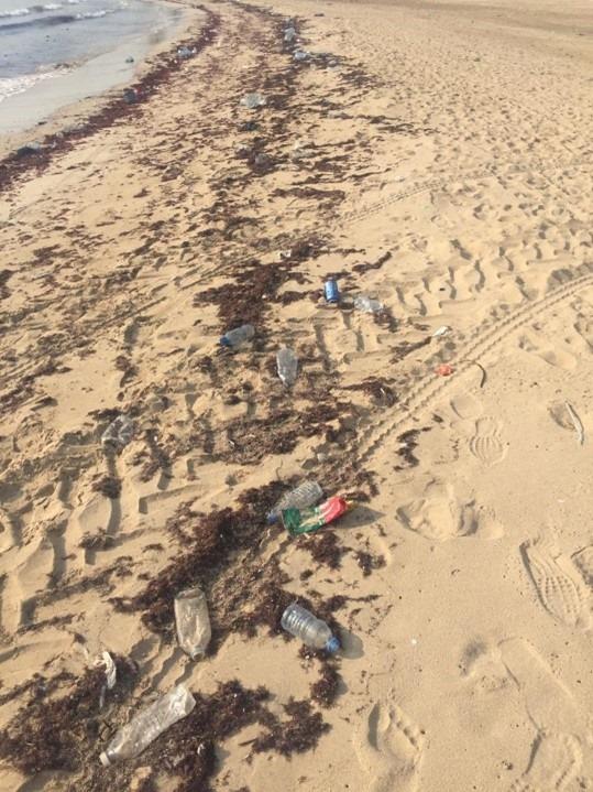 Beach litter activity in Tyre, Lebanon, November 2020 6