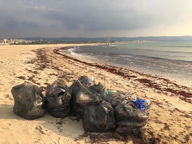 Beach litter activity in Tyre, Lebanon, November 2020 7