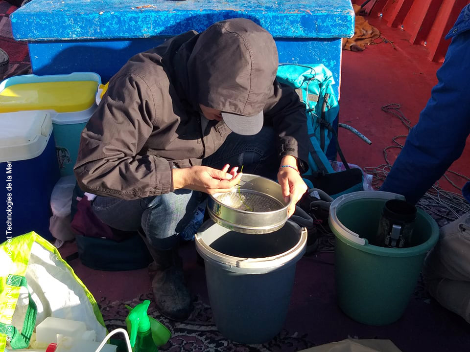 Monitoring activities on Monastir Bay 10- December 2020