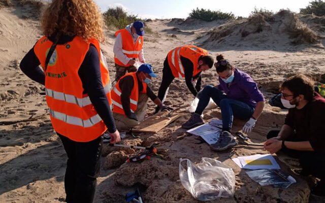 Monitoring activities on the beaches of the Italian Salento 2